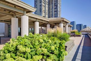 Photo 30: 201 80 Palace Pier Court in Toronto: Mimico Condo for lease (Toronto W06)  : MLS®# W4871604