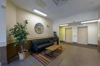 Photo 23: 308 505 19 Avenue SW in Calgary: Cliff Bungalow Apartment for sale : MLS®# A1126941