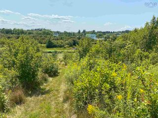 Photo 8: Shore Road in Merigomish: 108-Rural Pictou County Vacant Land for sale (Northern Region)  : MLS®# 202120405