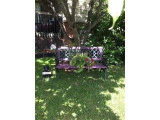 Photo 50: 10 GLENPATRICK Crescent: Cochrane House for sale : MLS®# C4094257