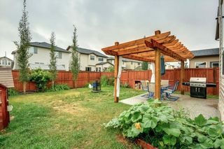 Photo 27: 161 CHAPALINA Heights SE in Calgary: Chaparral Detached for sale : MLS®# C4275162