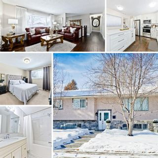Photo 1: 127 Manora Drive NE in Calgary: Marlborough Park Detached for sale : MLS®# A1074589