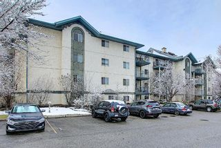 Photo 44: 110 11 Dover Point SE in Calgary: Dover Apartment for sale : MLS®# A1096781