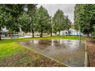 """Photo 39: 186 7790 KING GEORGE Boulevard in Surrey: East Newton Manufactured Home for sale in """"Crispen Bays"""" : MLS®# R2560382"""