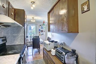 Photo 14: 217 Templemont Drive NE in Calgary: Temple Semi Detached for sale : MLS®# A1120693