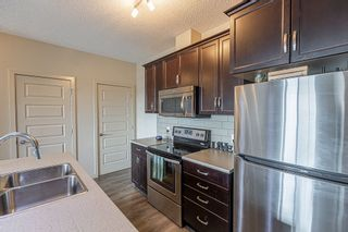 Photo 4: 233 503 ALBANY Way in Edmonton: Zone 27 Condo for sale : MLS®# E4240556