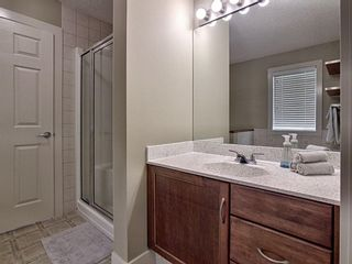 Photo 20: 656 Copperfield Boulevard SE in Calgary: Copperfield Detached for sale : MLS®# A1143747