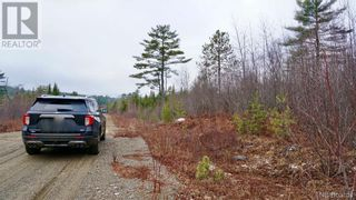 Photo 5: Lot #6 Route 740 in Heathland: Vacant Land for sale : MLS®# NB053419