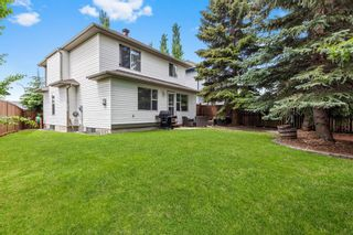 Photo 30: 296 Mt. Brewster Circle SE in Calgary: McKenzie Lake Detached for sale : MLS®# A1118914