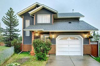 Photo 1: 144 Martinwood Court NE in Calgary: Martindale Detached for sale : MLS®# A1126396