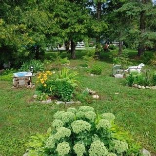 Photo 28: 220 Mcguire Beach Road in Kawartha Lakes: Rural Carden House (Bungalow) for sale : MLS®# X5338564