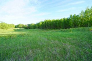 Photo 13: Range Road 233 TWP 520 NW: Rural Strathcona County Rural Land/Vacant Lot for sale : MLS®# E4179287