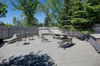 Photo 31: 111 Butte Hills Place in Rural Rocky View County: Rural Rocky View MD Detached for sale : MLS®# A1116161