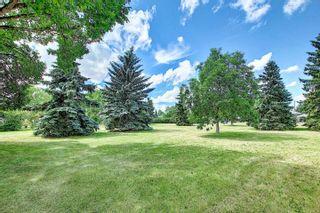 Photo 33: 13515 68 Street in Edmonton: Zone 02 House for sale : MLS®# E4253078