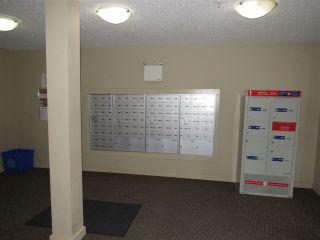 Photo 3: 213 5804 MULLEN Place in Edmonton: Zone 14 Condo for sale : MLS®# E4222798
