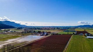 Photo 11: LT.2 TOLMIE ROAD in Abbotsford: Sumas Prairie Land for sale : MLS®# R2540016