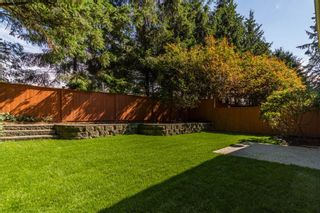 "Photo 14: 10 20985 CAMWOOD Avenue in Maple Ridge: Southwest Maple Ridge Townhouse for sale in ""Maple Court"" : MLS®# R2088197"