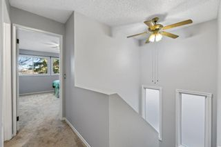 Photo 11: 32 Berkshire Close NW in Calgary: Beddington Heights Detached for sale : MLS®# A1154125