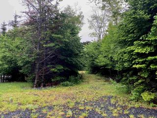 Photo 30: 491 Anderson Drive in Goldenville: 303-Guysborough County Residential for sale (Highland Region)  : MLS®# 202116185