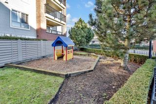 """Photo 20: B305 8929 202 Street in Langley: Walnut Grove Condo for sale in """"The Grove"""" : MLS®# R2529378"""