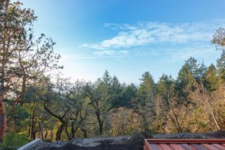 Photo 13: 1343 Flint Ave in : La Bear Mountain House for sale (Langford)  : MLS®# 869736