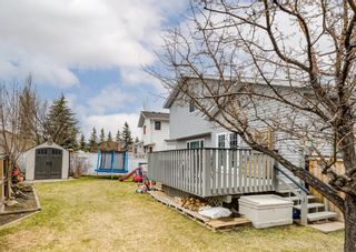 Photo 44: 95 Tipping Close SE: Airdrie Detached for sale : MLS®# A1099233