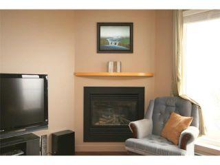 Photo 19: 223 69 SPRINGBOROUGH Court SW in Calgary: Springbank Hill Condo for sale : MLS®# C4002803