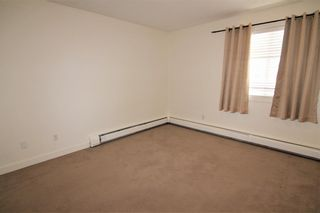 Photo 12: 303 4455A Greenview Drive NE in Calgary: Greenview Apartment for sale : MLS®# A1049950