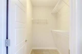 Photo 25: 18 EVANSFIELD Park NW in Calgary: Evanston Detached for sale : MLS®# C4295619