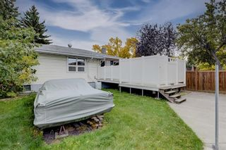Photo 29: 3007 36 Street SW in Calgary: Killarney/Glengarry Detached for sale : MLS®# A1149415