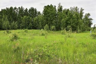 Photo 10: 33538 Rg RD 30: Rural Mountain View County Land for sale : MLS®# C4305650