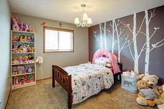 Photo 21: 292 ELGIN Way SE in Calgary: McKenzie Towne Detached for sale : MLS®# C4280970