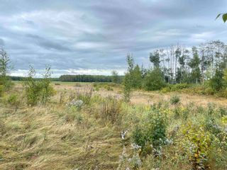 Photo 25: 24021 Twp Rd 620: Rural Westlock County House for sale : MLS®# E4264230