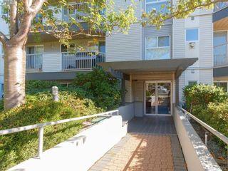 Photo 11: 105 445 Cook St in VICTORIA: Vi Fairfield West Condo for sale (Victoria)  : MLS®# 771947
