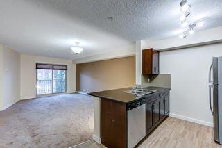 Photo 11: 204 5816 MULLEN Place in Edmonton: Zone 14 Condo for sale : MLS®# E4262303