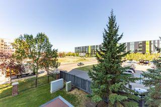 Photo 29: 208 10319 111 Street in Edmonton: Zone 12 Condo for sale : MLS®# E4260894