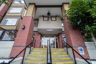 Photo 5: 132 5660 201A Street in Langley: Langley City Condo for sale : MLS®# R2502123