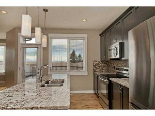 Photo 6: 113 Rainbow Falls Boulevard: Chestermere House for sale : MLS®# C3656518