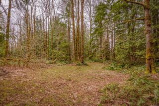 Photo 37: 4365 Munster Rd in : CV Courtenay West House for sale (Comox Valley)  : MLS®# 872010