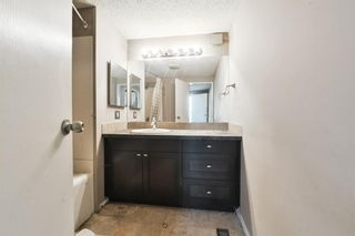 Photo 16: 871 Briarwood Road: Strathmore Detached for sale : MLS®# A1136796