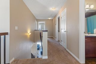 Photo 22: 101 COPPERSTONE Close SE in Calgary: Copperfield Detached for sale : MLS®# A1076956