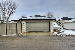 Photo 35: 51 Prestwick Street SE in Calgary: McKenzie Towne Detached for sale : MLS®# A1086286