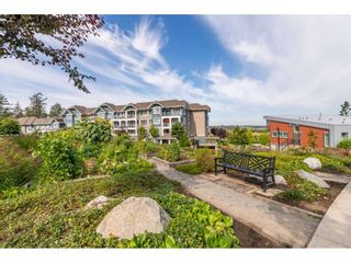 """Photo 31: 105 16380 64 Avenue in Surrey: Cloverdale BC Condo for sale in """"The Ridgse and Bose Farms"""" (Cloverdale)  : MLS®# R2556734"""