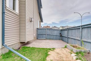 Photo 46: 1571 COPPERFIELD Boulevard SE in Calgary: Copperfield Detached for sale : MLS®# A1107569