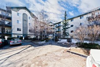 Main Photo: 103 11 Dover Point SE in Calgary: Dover Apartment for sale : MLS®# A1083330