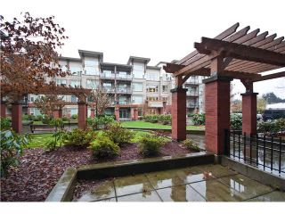 "Photo 14: 119 33539 HOLLAND Avenue in Abbotsford: Central Abbotsford Condo for sale in ""THE CROSSING"" : MLS®# F1430875"