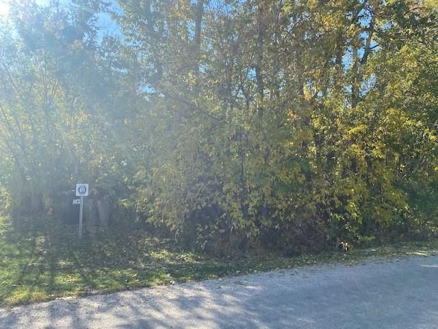 Main Photo: 171 CRYSTAL SPRINGS Drive: Rural Wetaskiwin County Rural Land/Vacant Lot for sale : MLS®# E4265163