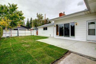Photo 22: 1124 Northmount Drive NW in Calgary: Brentwood Detached for sale : MLS®# A1144480
