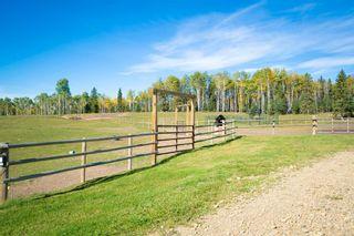 Photo 15: 283131 RANGE ROAD, 51: Bottrel Agriculture for sale : MLS®# A1152110