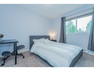 Photo 23: 10643 FRASERGLEN Drive in Surrey: Fraser Heights House for sale (North Surrey)  : MLS®# R2561811
